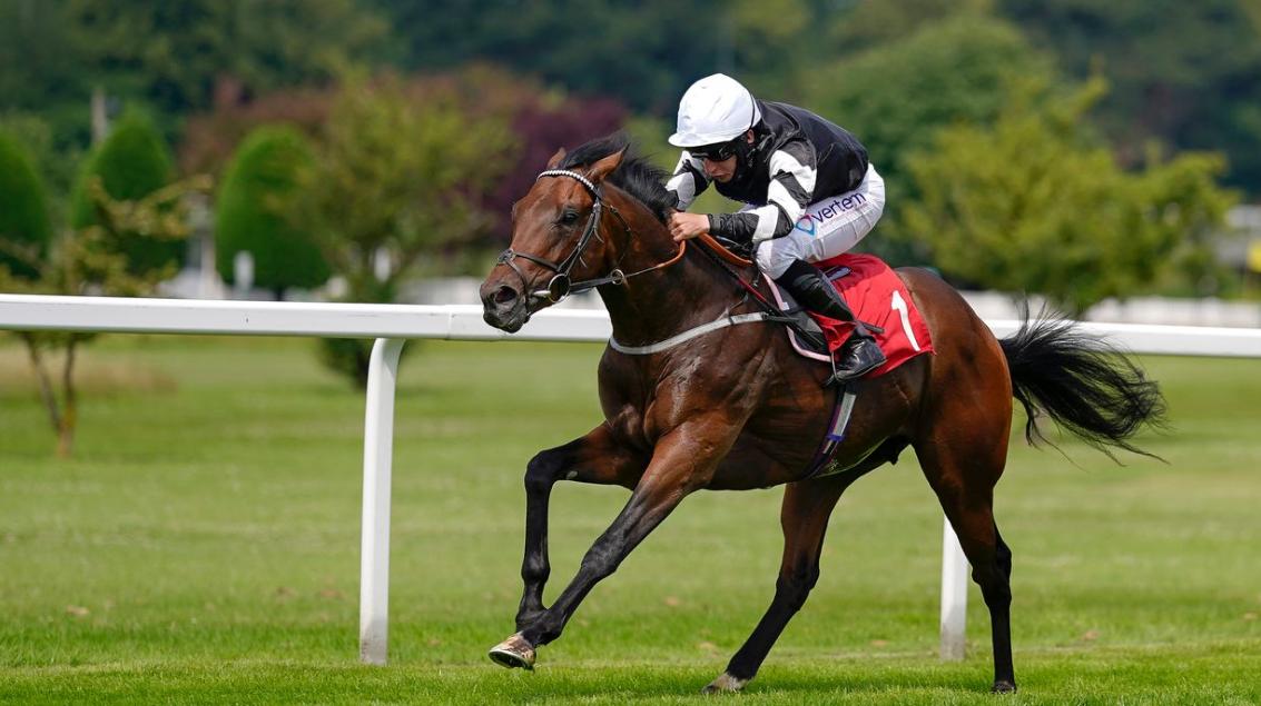 todays horse racing tips