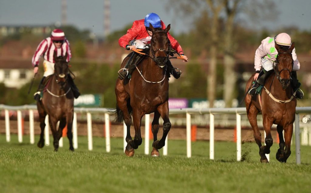 Free Horse Racing Tips for Betting on Horses