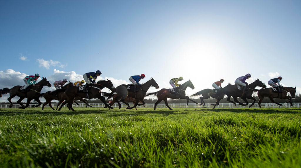 Incredibly Clever Horse Racing Tips For Today